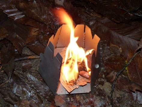 Birch Fire